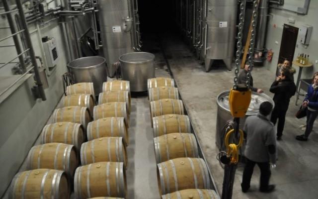 Студенти Свалявського ознайомлюються з технологією виробництва токайського вина у Словаччині