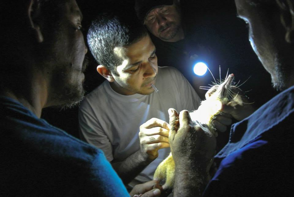 Біологи в Пуерто-Рико