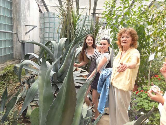 Екзотичні рослини у ботанічному саді УжНУ