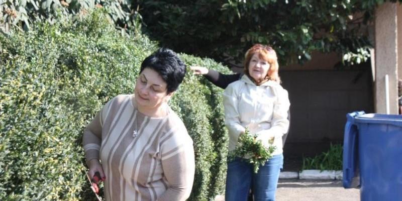 Директорка Закарпатського інституту післядипломної педагогічної освіти Тетяна Палько підстригає кущі