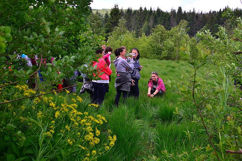 Студенти із Сум на Іршавщині