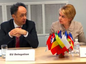 Лілія Гриневич і представники ЄС