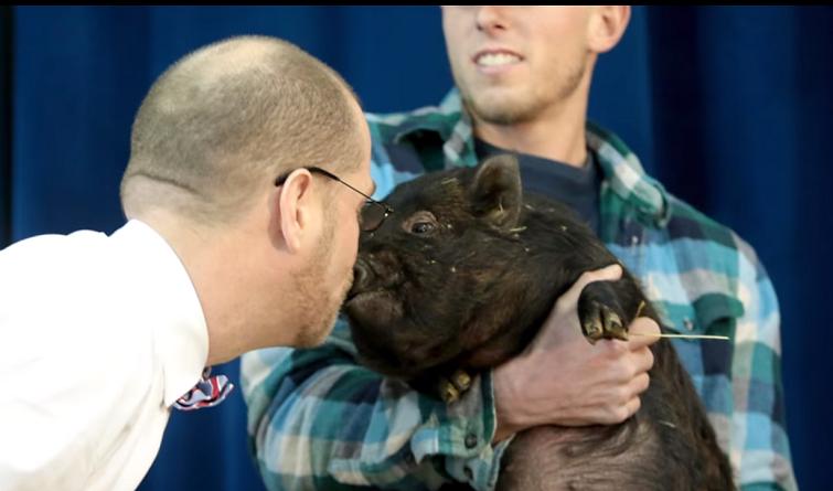 Директор американської школи цілує свиню :)
