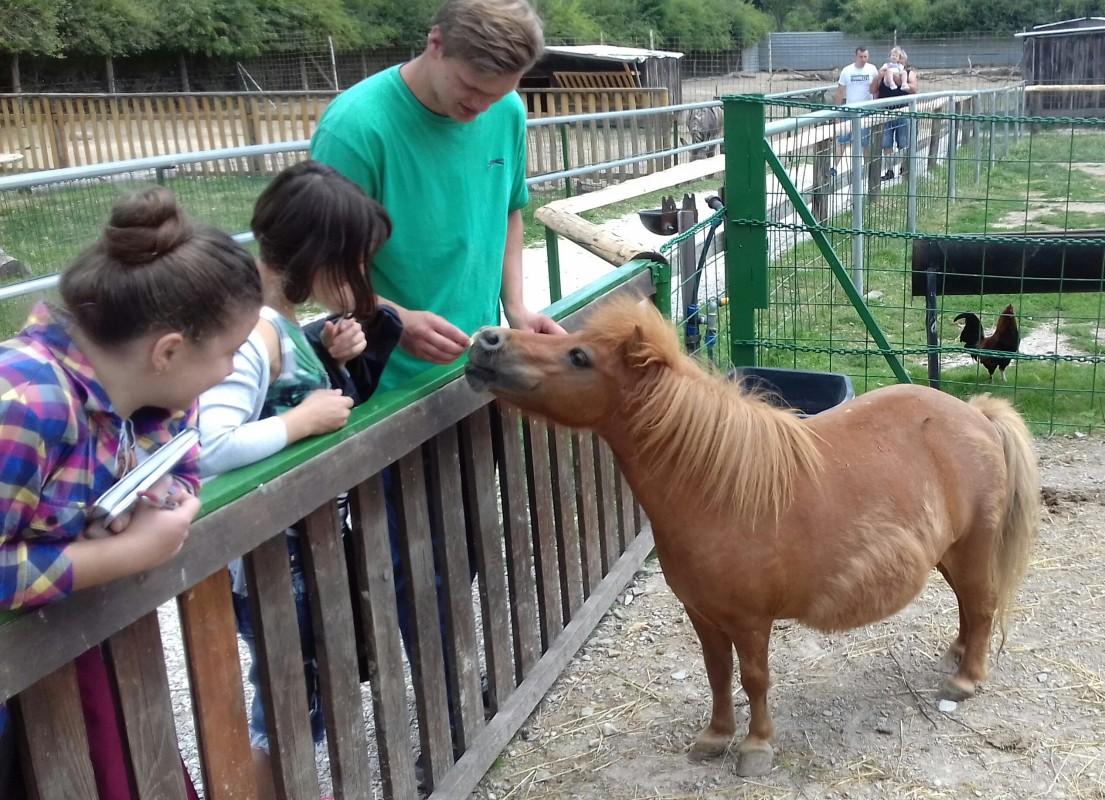 Археологічна практика у Словаччині завершилася бонусним походом до зоопарку