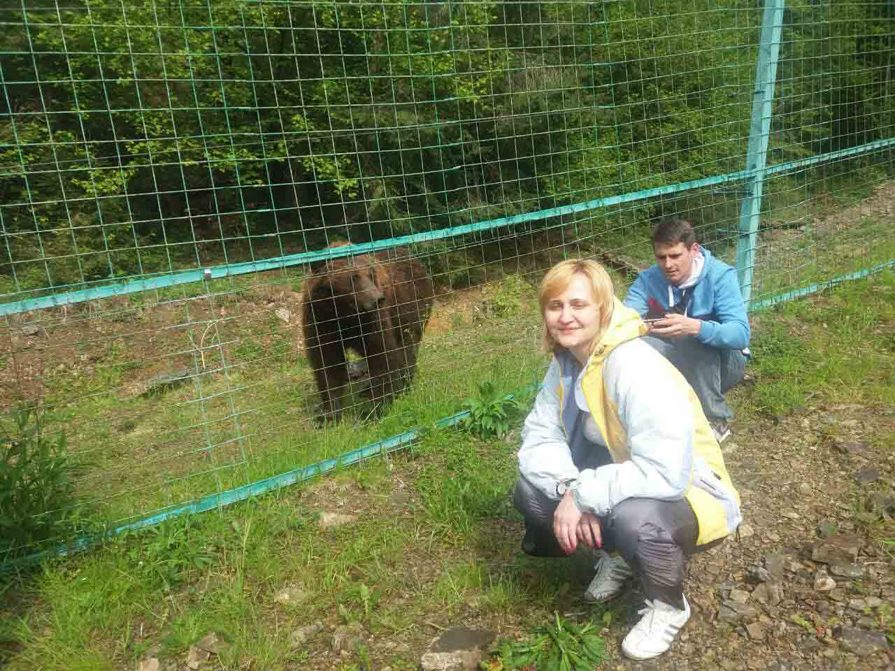 У санаторії для ведмедів